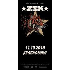 ZSK Eintrittskarte '11.10.18' Regensburg'